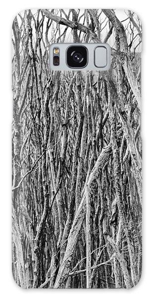 Wilsons Promontory Galaxy Case - Tree Cemetery V2 by Douglas Barnard