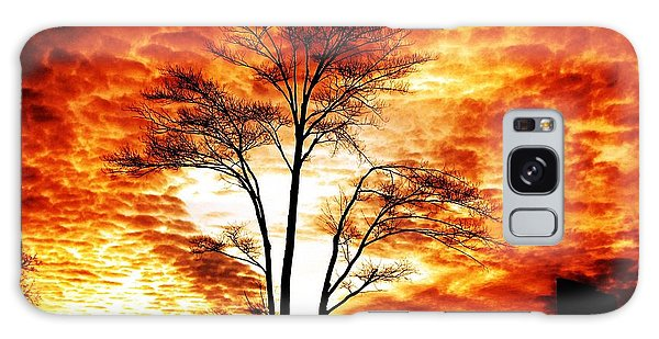 Tree Light Galaxy Case