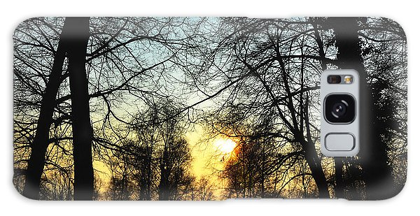 Trees And Sun In A Foggy Day Galaxy Case
