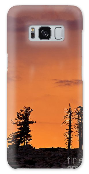 Trees At Sunset Galaxy Case
