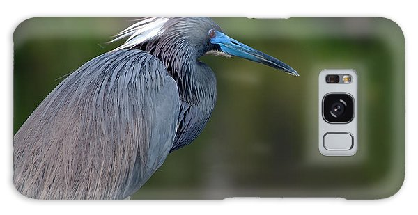 Tricolored Heron Galaxy Case
