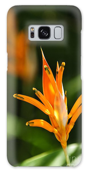 Parakeet Galaxy Case - Tropical Orange Heliconia Flower by Elena Elisseeva