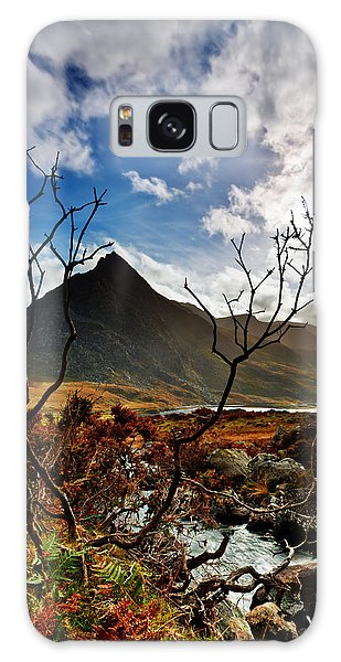 Tryfan And Tree Galaxy Case