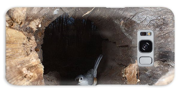 Tufted Titmouse In A Log Galaxy Case by Ted Kinsman