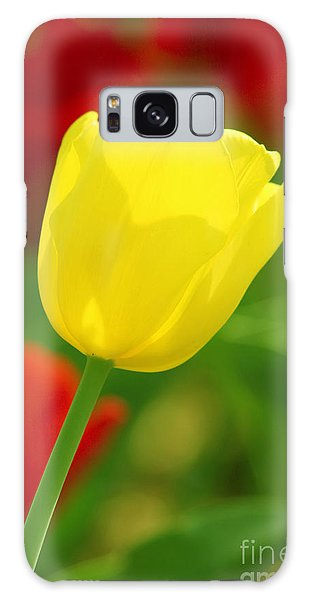 Galaxy Case featuring the photograph Tulipan Amarillo by Francisco Pulido