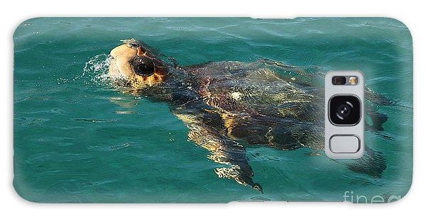 Turtle Galaxy Case