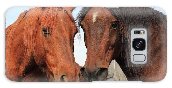 Two Horses Galaxy Case