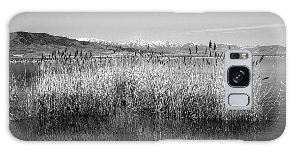 Utah Lake And Wasatch Mountains Galaxy Case by Tracie Kaska