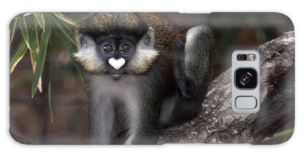 Valentine Monkey Galaxy Case