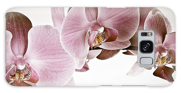 Vintage Orchid Galaxy Case by  Onyonet  Photo Studios