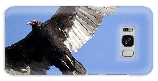 Vulture Galaxy Case