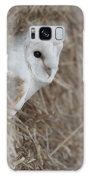 Watchfull Barn Owl Galaxy Case