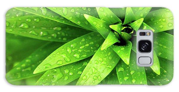Green Galaxy Case - Wet Foliage by Carlos Caetano