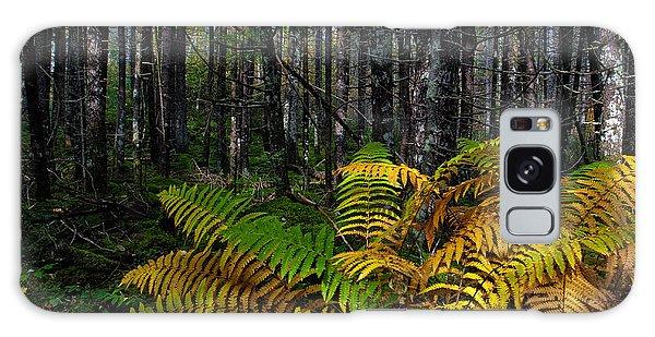 Where The Ferns Grow Galaxy Case