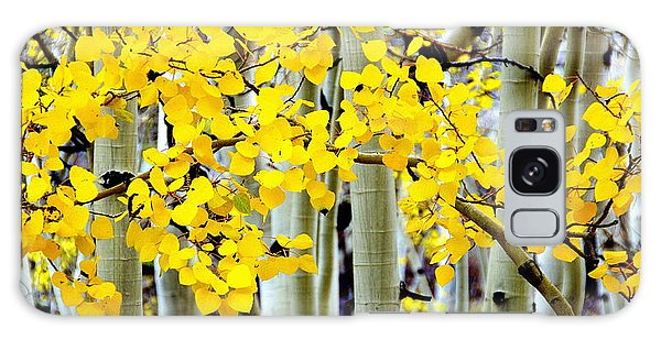 White Aspen Golden Leaves Galaxy Case by Jeff Lowe