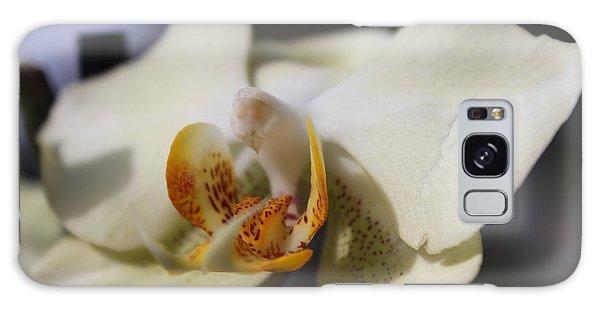 White Dove Orchid Galaxy Case
