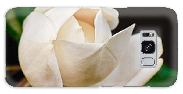 White Magnolia Unfolding Galaxy Case by Ann Murphy