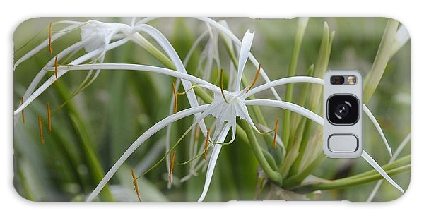 White Spider Orchid Galaxy Case