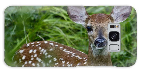 White-tailed Deer Galaxy Case - Who Are You by Betsy Knapp