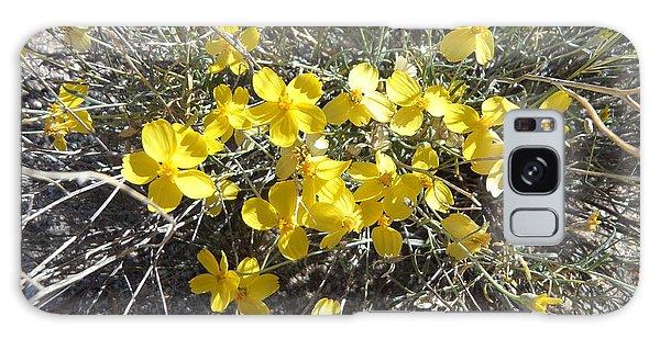 Wild Desert Flowers Galaxy Case by Kume Bryant