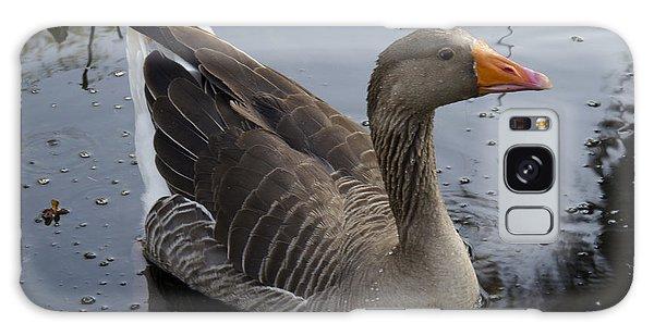 Wild Greylag Goose Galaxy Case by Lynn Palmer