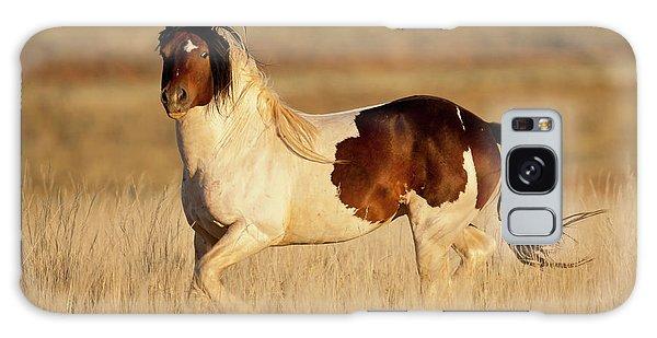 Wild Mustang Stallion Galaxy Case