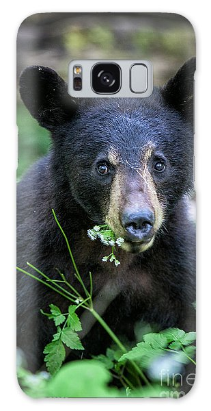 Wildflower Bear Galaxy Case