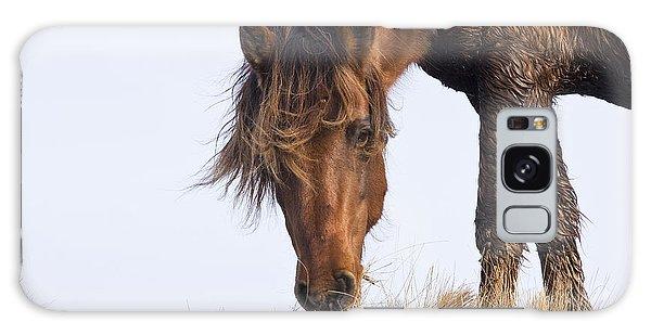 Wildhorse On The High Dunes Galaxy Case