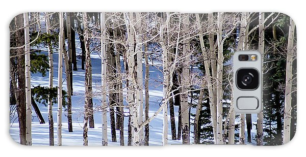Winter Aspens Galaxy Case by Colleen Coccia