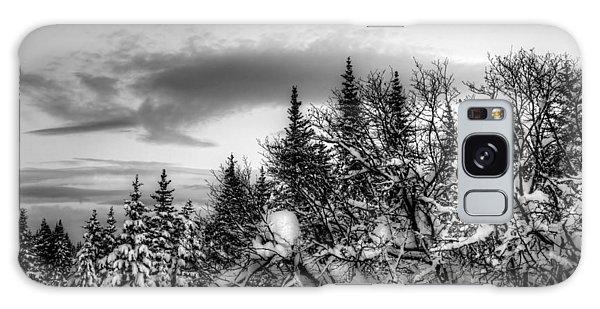 Winter Evening Galaxy Case by Michele Cornelius