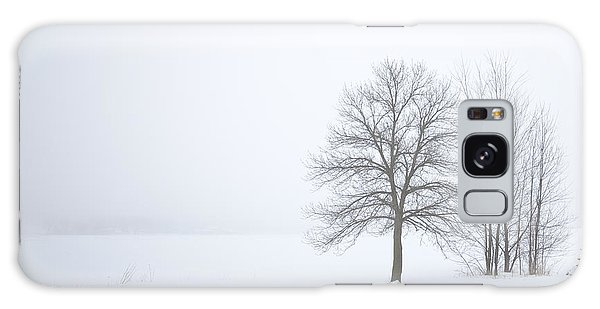 Winter Fog And Trees Galaxy Case