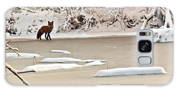 Winter Fox Galaxy Case