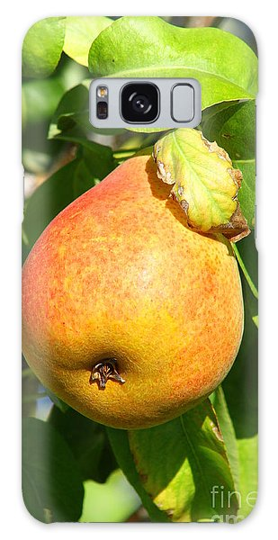 Winter Pear 1 Galaxy Case