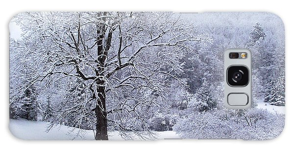 Winter Tree And Fence In The Valley Galaxy Case