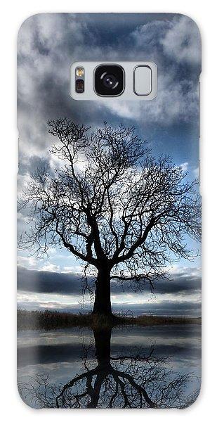 Wintering Oak Tree Galaxy Case