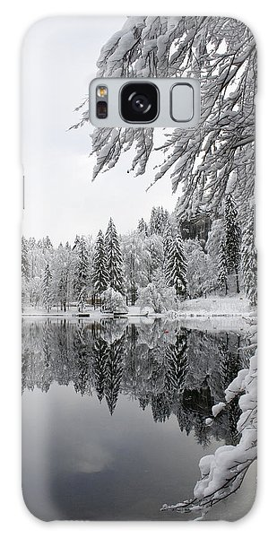 Wintery Reflections Galaxy Case by Ian Middleton