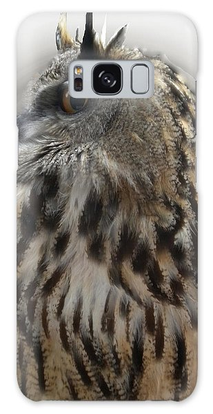 Wise Forest Owl Alicante Region Spain Galaxy Case