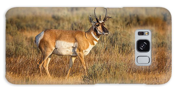 Wyoming Pronghorn Galaxy Case