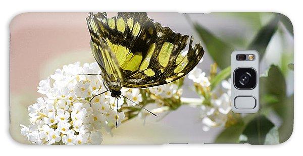 Yellow Butterfly Beauty Galaxy Case by Andrea Hazel Ihlefeld