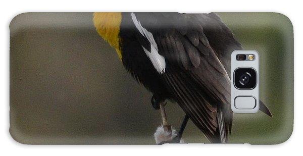 Yellow-headed Blackbird Galaxy Case