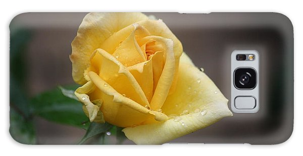 Yellow Rose Of Texas Galaxy Case