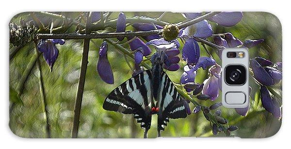 Zebra Swallowtail Butterfly 2 Galaxy Case
