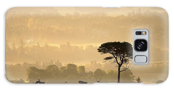 Autumn Morning, Strathglass Galaxy Case