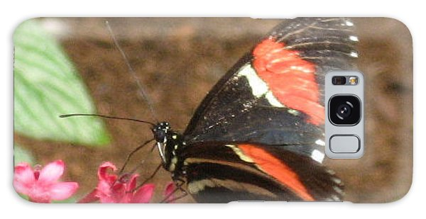 Red Admiral Butterfly Galaxy Case by Deborah Dendler