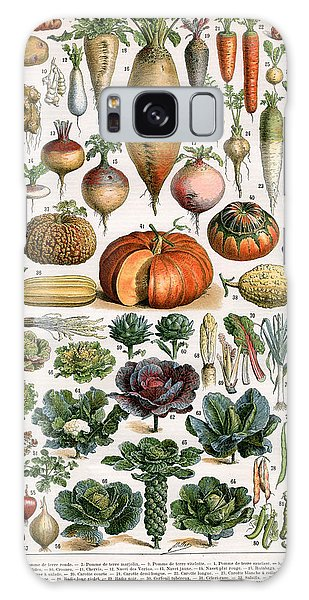 Illustration Of Vegetable Varieties Galaxy Case