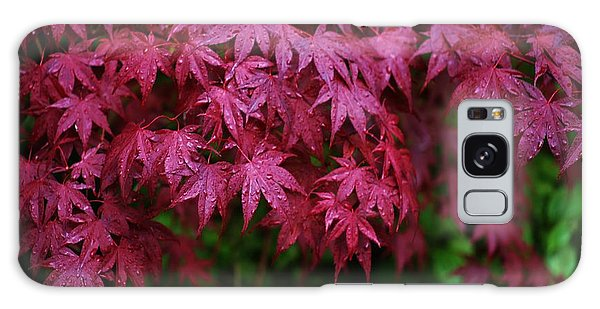 Japanese Maple Rain Galaxy Case