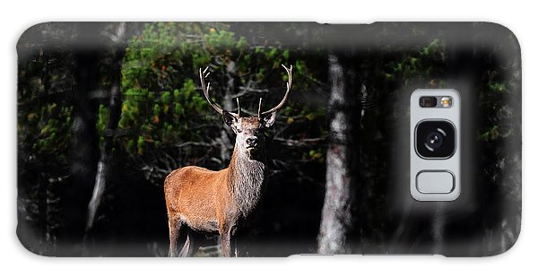 Stag In The Forest Galaxy Case