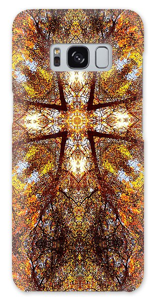 016 Galaxy Case by Phil Koch
