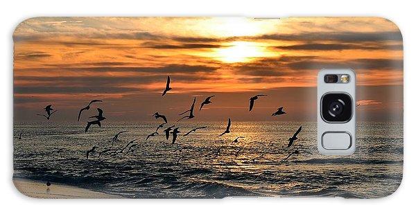 0221 Gang Of Gulls At Sunrise On Navarre Beach Galaxy Case