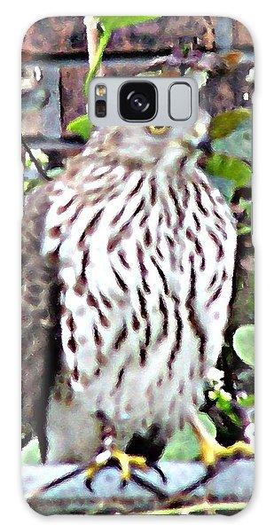 03192015 Sparrow Hawk Galaxy Case
